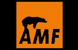 Somos distribuidores de Knauf AMF